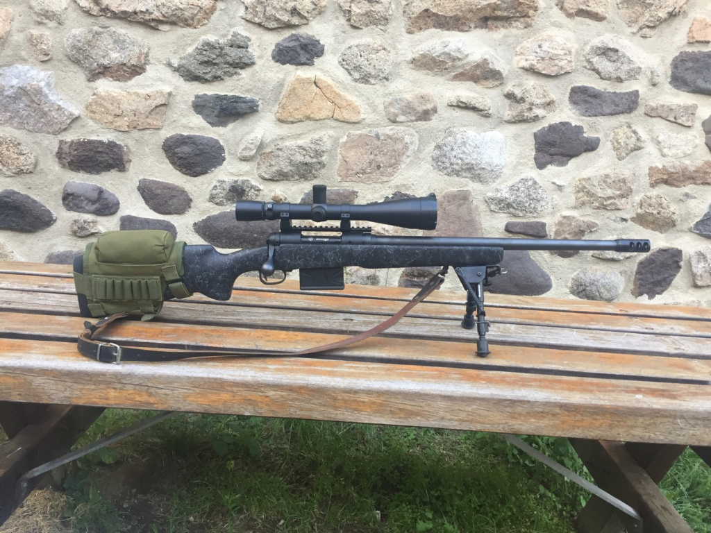 Remington vs Savage Vs Ruger - Page 2 Savage21