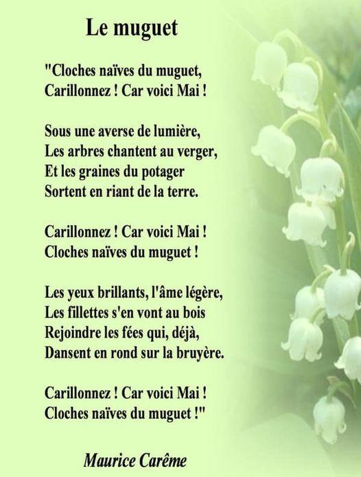 Bonjour ~ Bonsoir  - Page 13 18092810