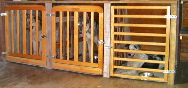 Caisse/cage de transport: utilisation - Page 2 Sany0412