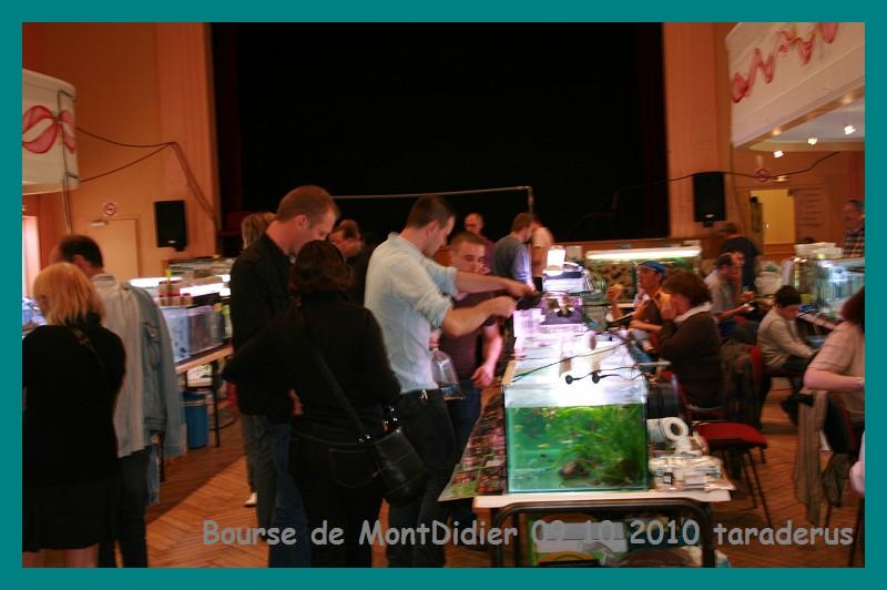 Bourse aux poissons le 10/10/2010 à Montdidier - Page 2 1312