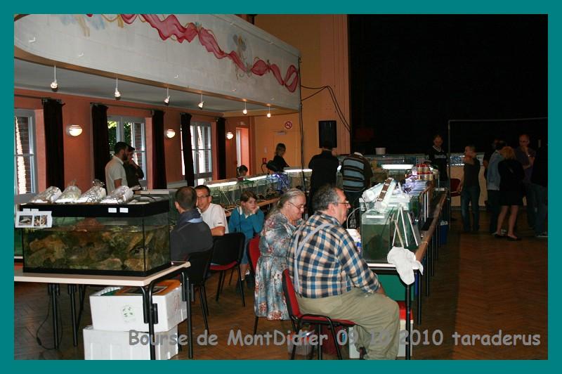 Bourse aux poissons le 10/10/2010 à Montdidier - Page 2 213
