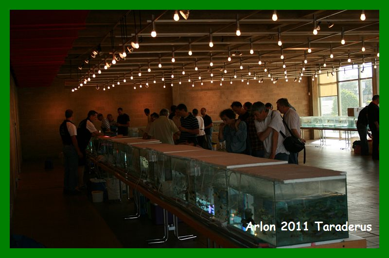 Arlon 2011( le 08/05/2011) Arlon_11
