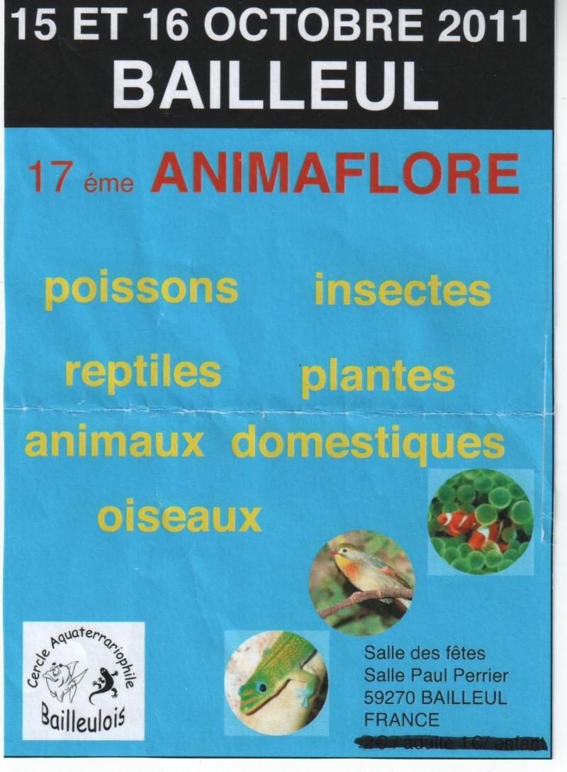 17ème ANIMAFLORE 15/16 Octobre 2011 BAILLEUL Bourse10