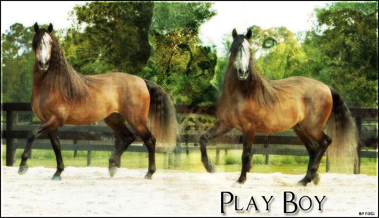 Box de Play Boy Play_b10