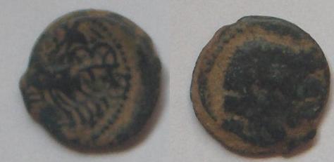 Bronce Galo Bronze10