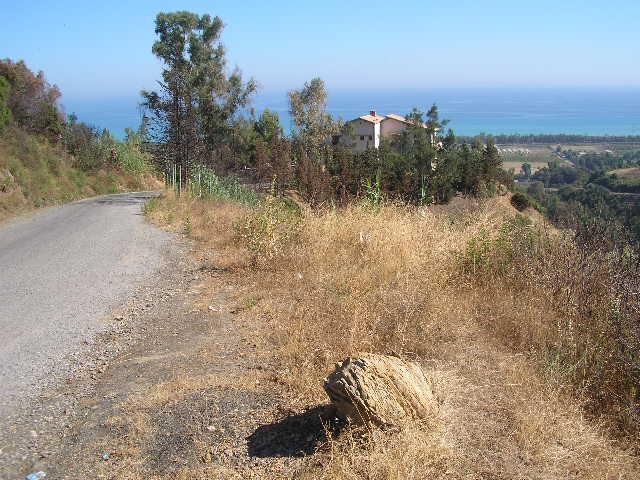 Diverses Photos de mon village natal (Taremant, Aokas) P1010064