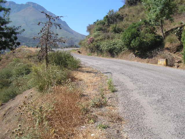 Diverses Photos de mon village natal (Taremant, Aokas) P1010066