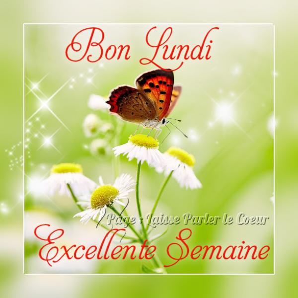 Ici on se dit bonjour  - Page 39 0a240412