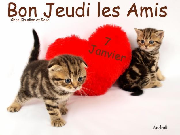 Ici on se dit bonjour  - Page 25 13664610
