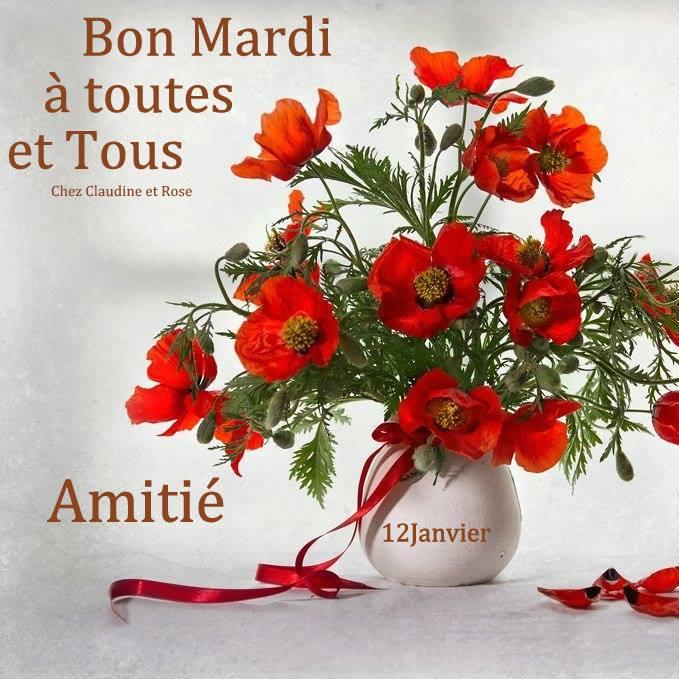 Ici on se dit bonjour  - Page 25 13675310