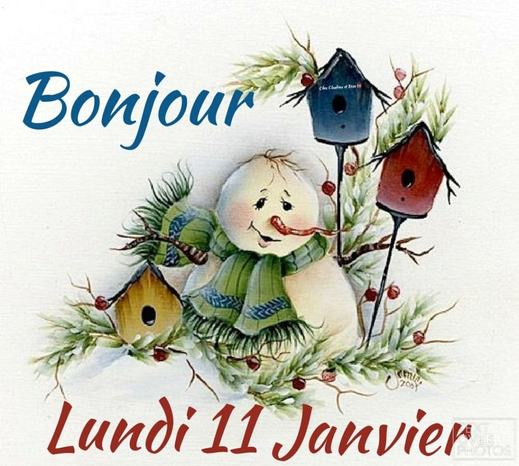 Ici on se dit bonjour  - Page 25 13805510