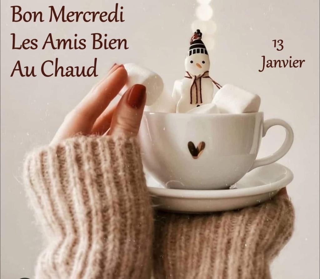 Ici on se dit bonjour  - Page 25 13873410