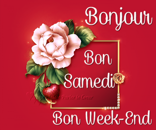Ici on se dit bonjour  - Page 39 33078810