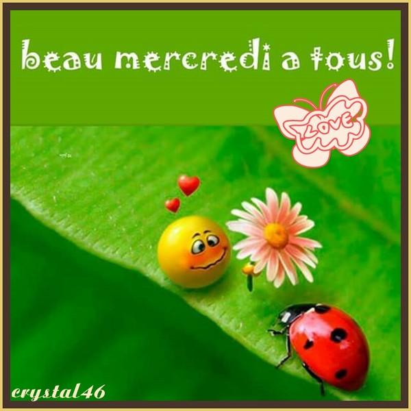 Bonjour - Page 39 5198f710
