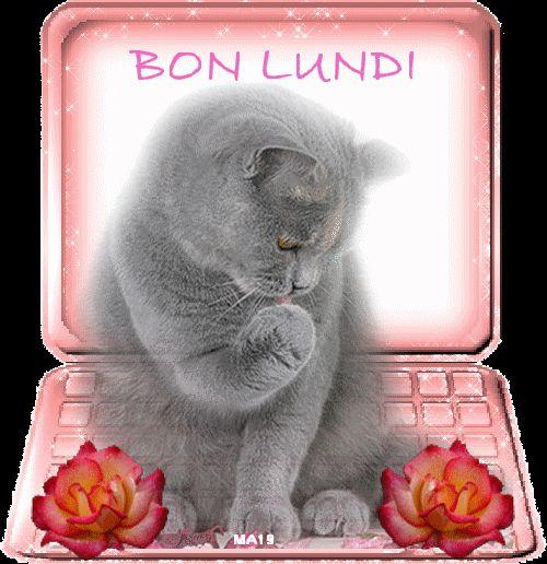 Ici on se dit bonjour  - Page 39 Bon-lu22