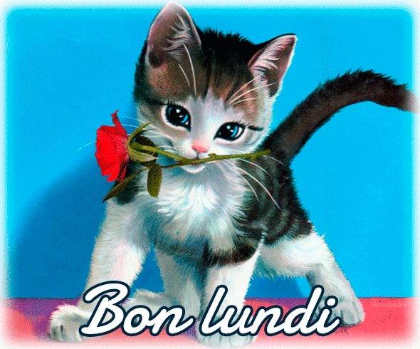 Ici on se dit bonjour  Bon-lu24