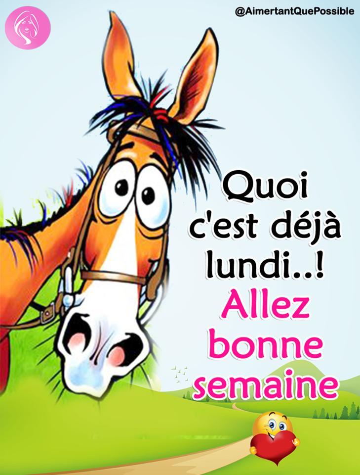 Ici on se dit bonjour  - Page 21 D165ud10