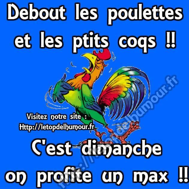 Bonjour - Page 40 Dimanc10