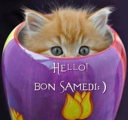Ici on se dit bonjour  - Page 12 Fa7ae010
