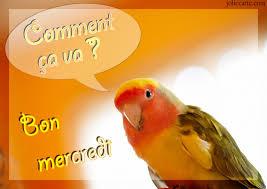 Ici on se dit bonjour  - Page 20 Image246