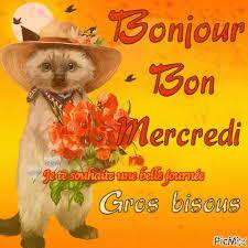 Ici on se dit bonjour  - Page 21 Image254