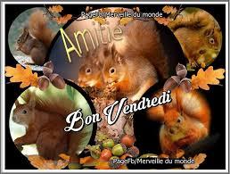 Bonjour - Page 4 Images53