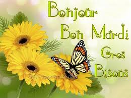 Bonjour - Page 4 Images58