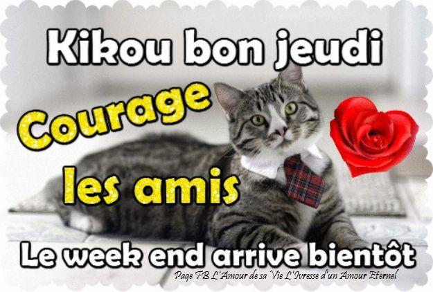 Bonjour - Page 8 Images75