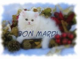 Ici on se dit bonjour  Images76