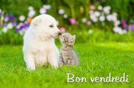 Bonjour - Page 10 Images80