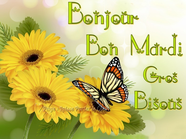 Ici on se dit bonjour  - Page 21 Mardi_21