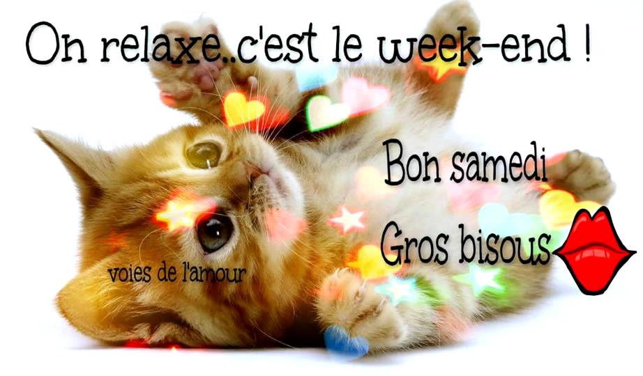 Ici on se dit bonjour  - Page 19 Samedi37