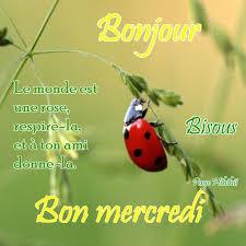 Ici on se dit bonjour  - Page 21 Tzolz374