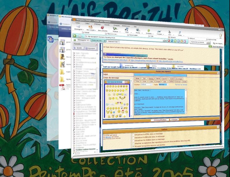 La rotation 3D de Windows Vista sous XP - ShockAero 1.35 Aero10