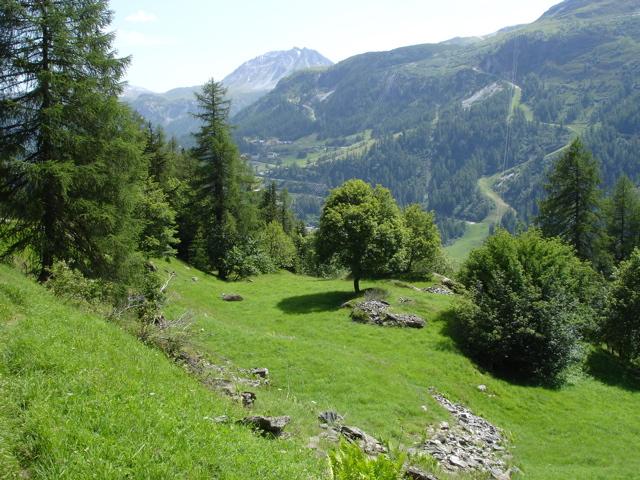 Nazonde, ancien hameau de Tignes Dsc02220