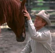 L'Homme qui murmurait a l'oreille des chevaux Pfilm410