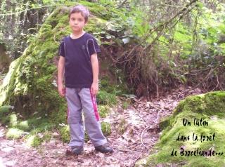 Images de Brocéliande... Photo_18
