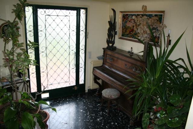 Les plantes que j'ai maintenant en intérieur, dans ma maison Entree12