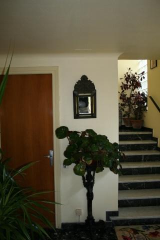 Les plantes que j'ai maintenant en intérieur, dans ma maison Entree13