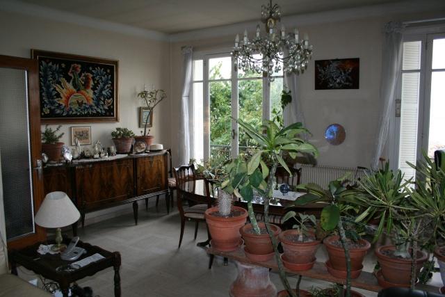Les plantes que j'ai maintenant en intérieur, dans ma maison Living10