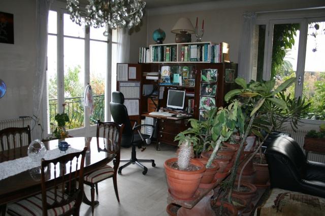 Les plantes que j'ai maintenant en intérieur, dans ma maison Living11