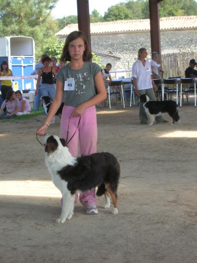 Régionale d'élevage Berger Australien à Sendets 16/09/07 - Page 5 Dscn3578