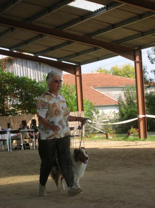Régionale d'élevage Berger Australien à Sendets 16/09/07 - Page 5 Dscn3617