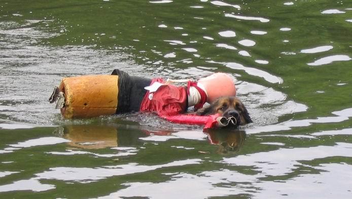 Travail à l'eau. Manequ10