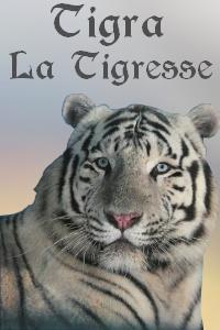 Galerie de Lyzzie Tigra210