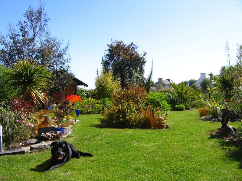 Un petit tour, dans mon jardin Img_0021