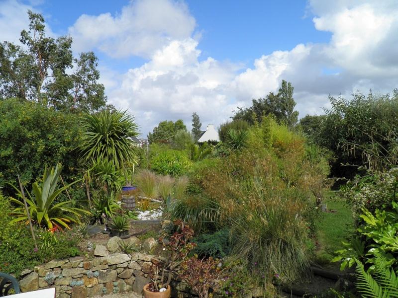 Un petit tour, dans mon jardin P6180910