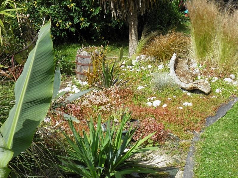 Un petit tour, dans mon jardin P6180915