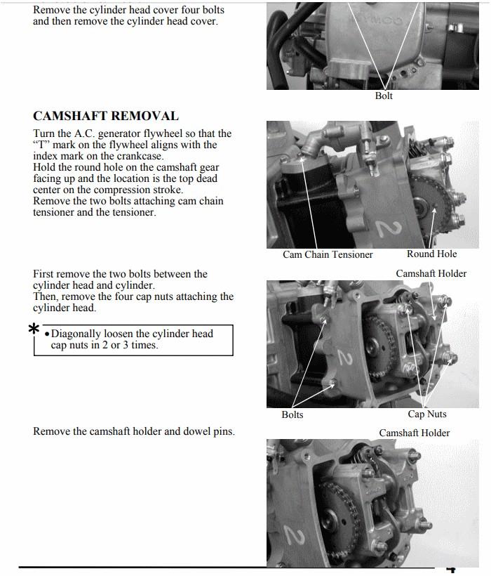 PGO 250 (ricoD) - Page 2 Arbrez10