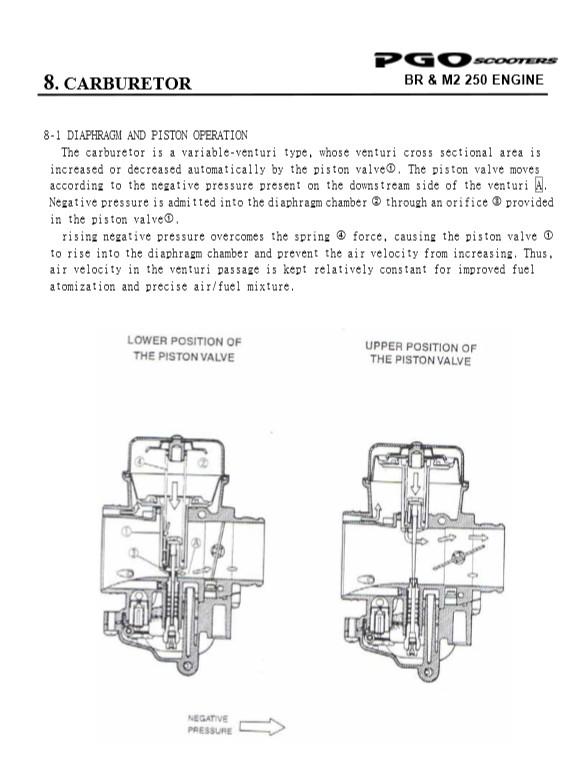 PGO 250 (ricoD) - Page 2 Carbpg10